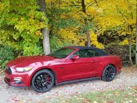 Picture of 2016 Ford Mustang GT Premium Convertible RWD, gallery_worthy