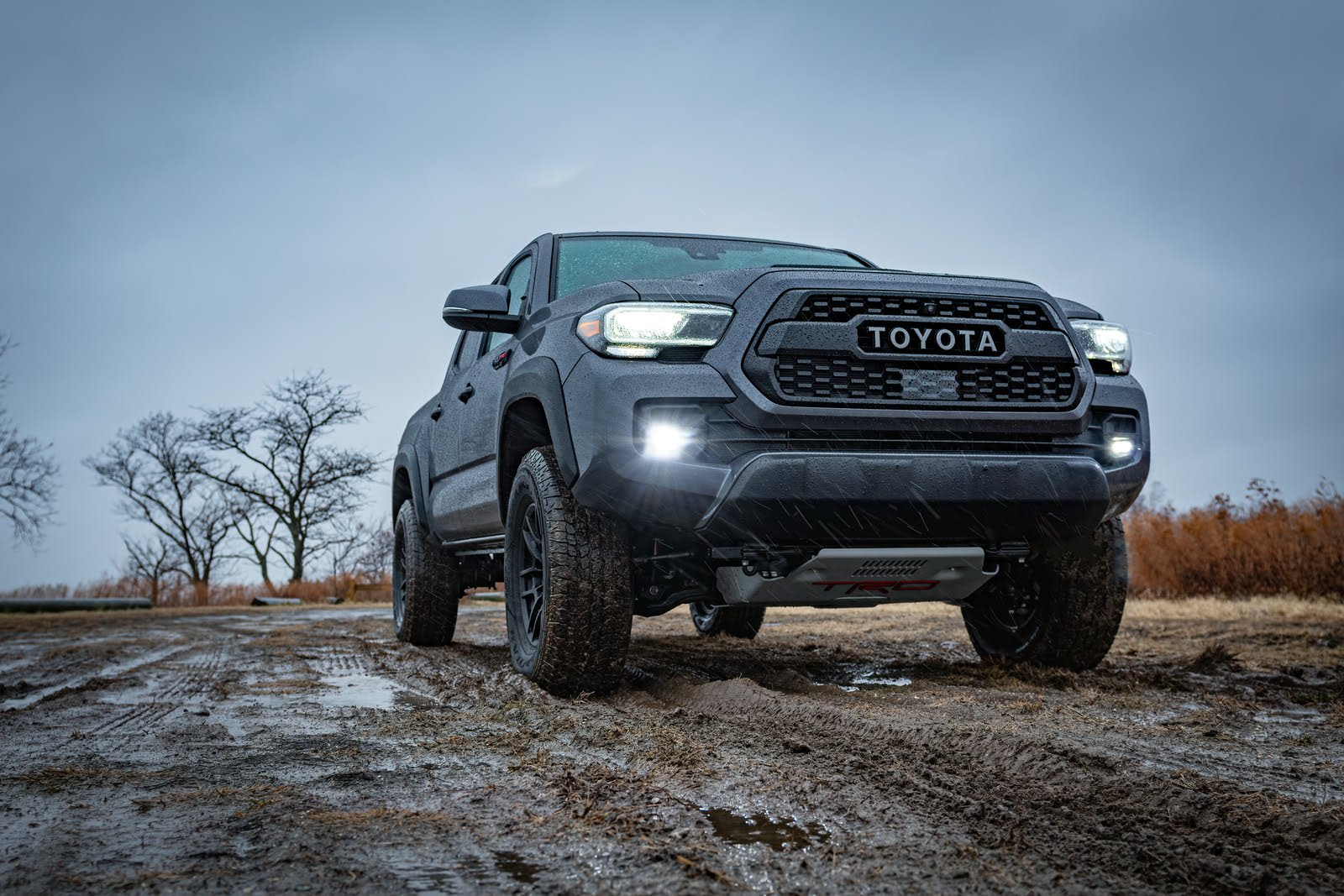 Used Toyota Tacoma For Sale Right Now Cargurus