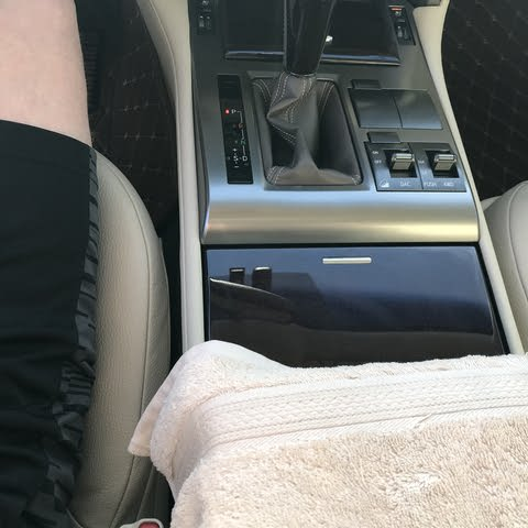 Picture of 2018 Lexus GX 460 4WD, interior, gallery_worthy