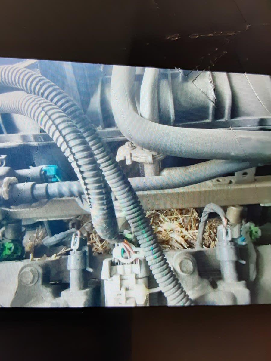 Chevrolet Silverado 40 Questions   Where is the fuel pressure ...