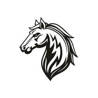 Black Stallion Auto Sales logo