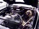 1977 Pontiac Firebird Trans Am SE Teamfirebird.free.fr  Rafe LORHO