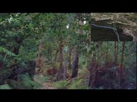 Fiat Panda 4x4 - Another drive through the woods